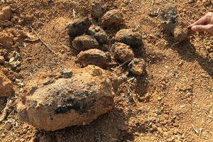 Phát hiện hàng trăm quả mìn, đạn pháo trong vườn nhà dân