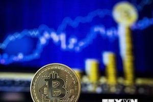 Lao dốc thảm hại, đồng tiền ảo Bitcoin liệu có thể 'lội ngược dòng'?