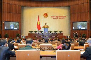 93,2% ĐB Quốc hội tán thành thông qua Luật Phòng, chống tham nhũng (sửa đổi)