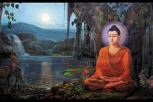 Phật dạy 9 cách đối đãi với con người để cuộc sống ngày càng tốt đẹp hơn