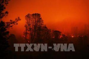 Nhanh chóng tìm kiếm các nạn nhân cháy rừng tại California