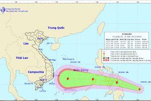 Vừa bị bão số 8 càn quét, Khánh Hòa chuẩn bị đối đầu bão số 9 cường độ rất mạnh