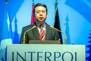 Ai sẽ là người ngồi vào chiếc ghế chủ tịch Interpol sau khi lãnh đạo người Trung Quốc bị bắt?