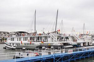 Quảng Ninh: Thí điểm quản lý, điều hành tàu ghép khách tham quan Vịnh Hạ Long