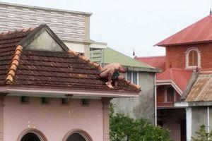 Bắt giữ người bố 'ngáo đá' ném con trai từ mái nhà xuống đất