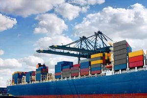 Ách tắc container thủy sản tại cảng: Doanh nghiệp 'ngồi trên lửa' chờ Bộ NNPTNT