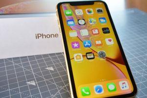 Bất chấp iPhone Xr ế, Apple vẫn lạc quan