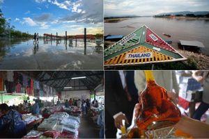 Hành trình 4 ngày 3 đêm ở Chiang Mai thơ mộng và thanh bình của Thái Lan