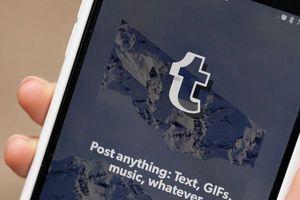 Tumblr thừa nhận bị xóa khỏi App Store vì nội dung khiêu dâm trẻ em