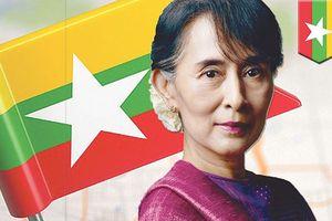 'Đóa hồng' Aung San Suu Kyi nguy cơ lụi tàn danh tiếng