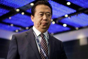 Sau Mạnh Hoành Vĩ, ai sẽ là chủ tịch tiếp theo của Interpol?