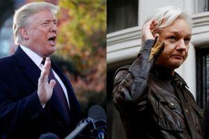 Trump 'gây bão' vì nói chẳng biết gì về ông chủ WikiLeaks