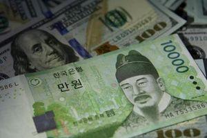 Nhiều doanh nghiệp Hàn Quốc rót vốn vào startup