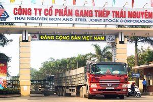 Gang thép Thái Nguyên 'Lớn mạnh cùng đất nước'