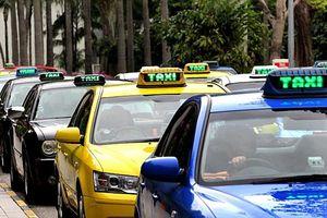 Taxi Hà Nội sẽ có 'màu áo' riêng, taxi 'dù' hết đường sống?