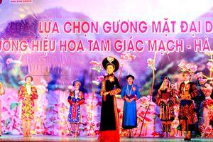 Lựa chọn gương mặt đại diện thương hiệu hoa tam giác mạch tỉnh Hà Giang
