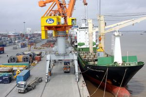 Cảng Đồng Nai (PDN) tạm ứng cổ tức 10% bằng tiền mặt