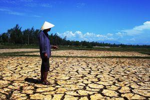 Quảng Nam: Thiếu nước sản xuất giữa mùa đông