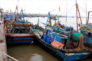 Bà Rịa – Vũng Tàu chủ động ứng phó với bão số 9