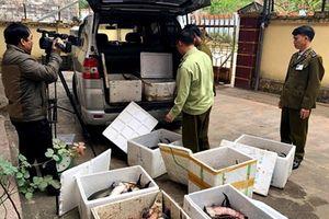 Lạng Sơn:Liên tiếp phát hiện, xử lý hàng loạt các trường hợp nhập lậu hàng hóa