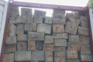 Bắt xe tải chở gỗ lậu gắn biển số giả