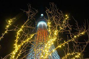 Chùm ảnh: 10 Tháp truyền hình cao nhất thế giới