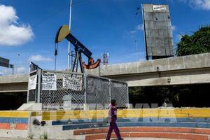 Giá dầu châu Á sụt giảm trong phiên 22/11