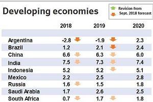 OECD: Thuế quan thương mại và lãi suất cao hơn đang làm chậm tăng trưởng kinh tế toàn cầu