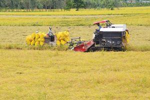 Nỗ lực tăng tốc nông nghiệp