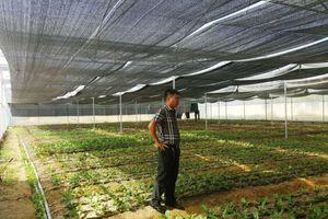 Quảng Bình: Doanh nghiệp có nguy cơ mất dự án vì bị 'ngâm' giấy phép xây dựng?