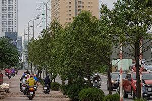 Cần giải pháp cho tình trạng đi xe máy ngược chiều trên vỉa hè đường Tố Hữu