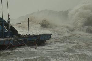 Toàn bộ học sinh tại TPHCM có thể được nghỉ học vào ngày mai để tránh bão Usagi