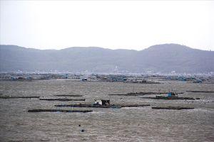 'Thủ phủ tôm hùm' khẩn trương chống bão số 9