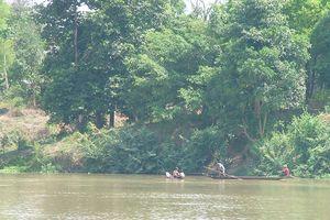 Phục hồi rừng đầu nguồn lưu vực sông Srêpốk cách nào?
