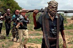 Khoảng 50 người bị bắt cóc tại vùng Đông Bắc Nigeria