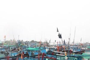 Ninh Thuận: Nghiêm cấm tàu thuyền ra khơi, tạm dừng các hoạt động vui chơi trên biển