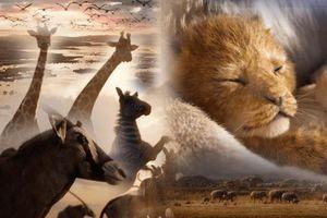 Trailer 'Lion King' bản live-action giống và khác gì so với phim hoạt hình?