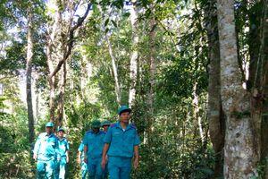 Điện Biên: Bảo vệ và phòng cháy, chữa cháy rừng trong mùa khô