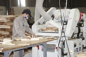 Ngày 23/11/2018 l Sự kiện và Con số Công Thương - Doanh nghiệp gỗ Việt quay về thị trường nội địa kiếm tỷ đô