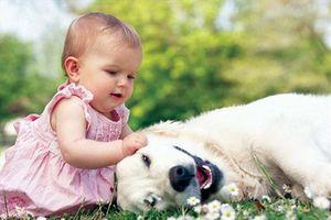 Không gian hoa kiểng, thú cưng rất lợi ích cho trẻ