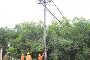 Giải pháp nào cho an toàn hành lang lưới điện?