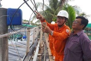 Bảo đảm nguồn điện ổn định cho ngành nuôi tôm ở đồng bằng sông Cửu Long