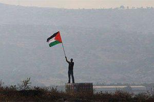 Hơn một trăm người Palestine bị thương tại Dải Gaza