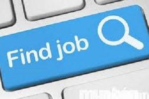 Giải quyết 5 nỗi sợ khi tìm việc mới