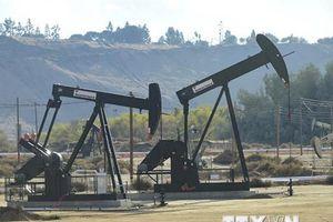 Giá dầu thô trên thị trường thế giới xuống mức thấp nhất một năm qua
