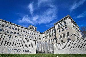 Mỹ muốn đuổi Trung Quốc ra khỏi Tổ chức thương mại thế giới, Bắc Kinh tức giận