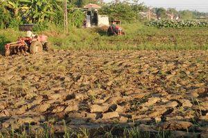 Thừa Thiên Huế: 'Khát' nước sản xuất giữa mùa mưa, dân lo lắng