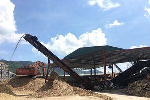 Thanh Hóa: Xử phạt Công ty Mai Anh 88 sai phạm trong hoạt động đầu tư xây dựng