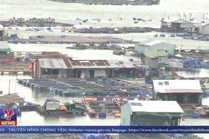 TP. Vũng Tàu di dân trước 12 giờ trưa để tránh bão