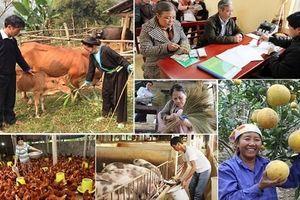 Phát triển kinh tế, giảm nghèo bền vững ở một huyện miền núi Ninh Thuận